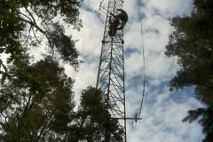 Antennarbete 2012